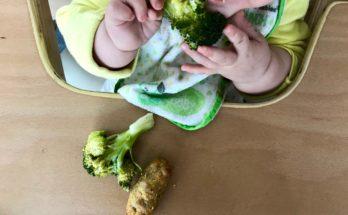 Drugi tydzień rozszerzania diety BLW