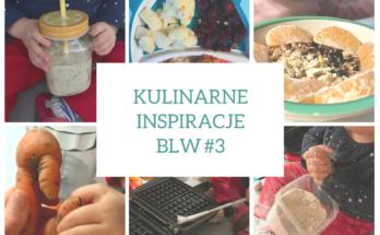Kulinarne inspiracje BLW 3