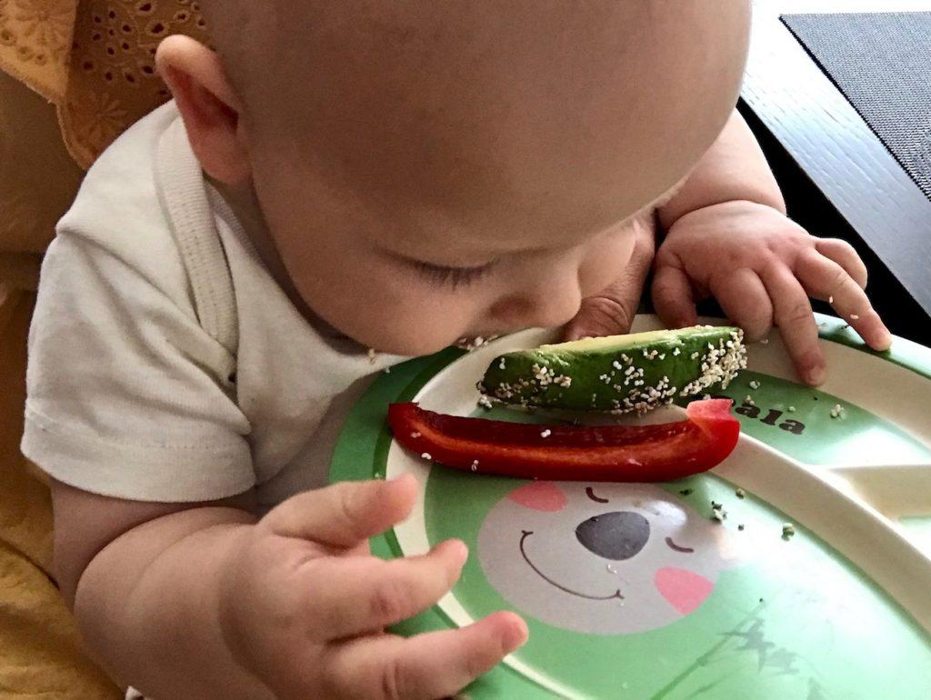 Pierwszy tydzień rozszerzania diety BLW