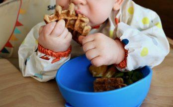 podsumowanie rozszerzania diety blw